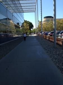 Stanford Walkway